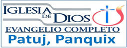 Logo for IDEC Patuj